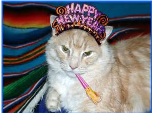 HappyNewYearsCat.png