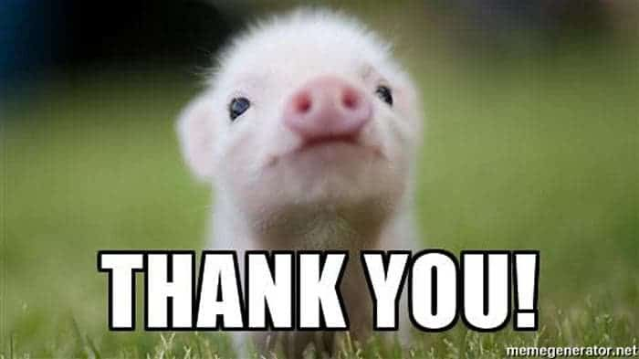 piglet-says-thank-you-memes.jpg